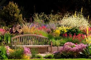 The Water Smart garden at the Denver Botanic Gardens