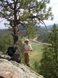 Photo courtesy of the University of Colorado's Western Water Assessment. A tree-ring scientist cores a roughly 300-year-old ponderosa pine growing above the South Platte River west of Lake George in this 2004 photo.