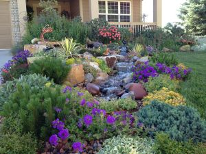 An exuberant border that attracts songbirds and butterflies galore. Photo courtesy of Tanya Fisher, Colorado Vista Landscape Design.