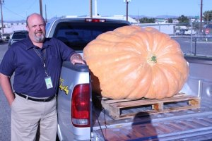 Erik Holck, Denver Water construction project manager, grew a giant pumpkin weighing in at 657 pounds this summer. For one stretch in August, the pumpkin grew about 28 pounds a day!