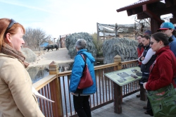 Jennifer Hale, Denver Zoo director of safety and sustainability, talks with Denver Water's conservation team at the Toyota Elephant Passage exhibit. The ponds are filled with recycled water .