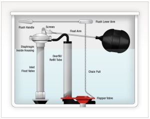 Understanding how your toilet works will help you track down leaks.