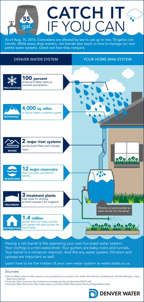 Rainbarrels-catchitifyoucan-infographic
