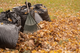 Forget the bags — mulch leaves right into the grass to provide nutrients for the lawn.